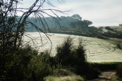 Llano de la Cruz, Ronda